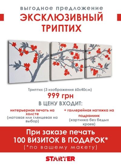 Starter печать на холсте вашего изображения, из одной картины разделение на 3 части, Киев, Васильковская 28