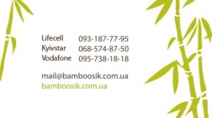 bamboosik_viz_lico_v2