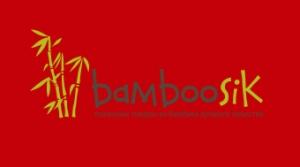 bamboosik_viz_oborot_v2